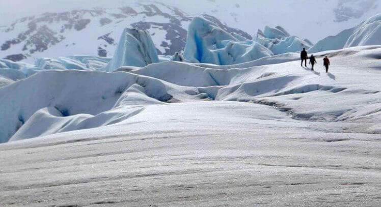 Hiking Glaciar Grey