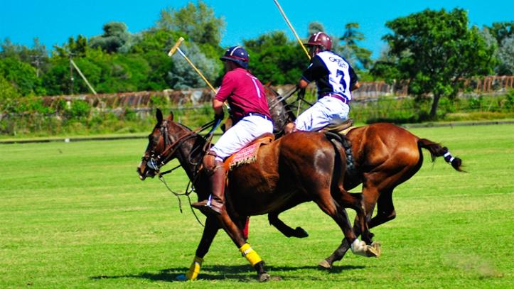 Partido de Polo Argentina