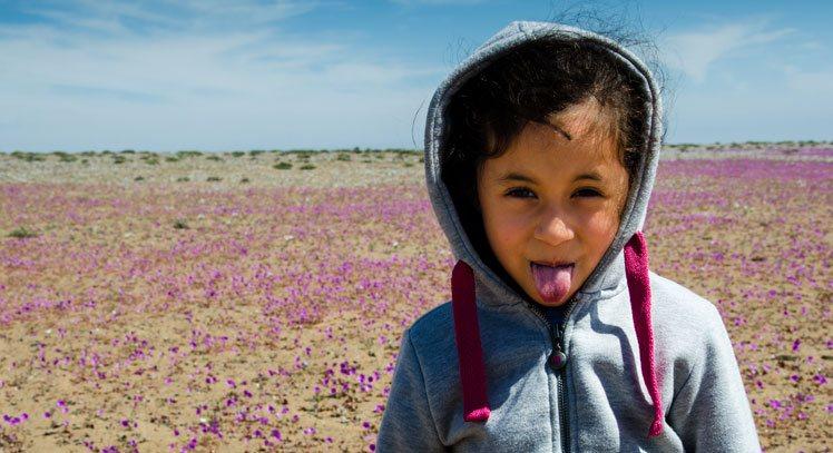 Flowering Desert Full Day