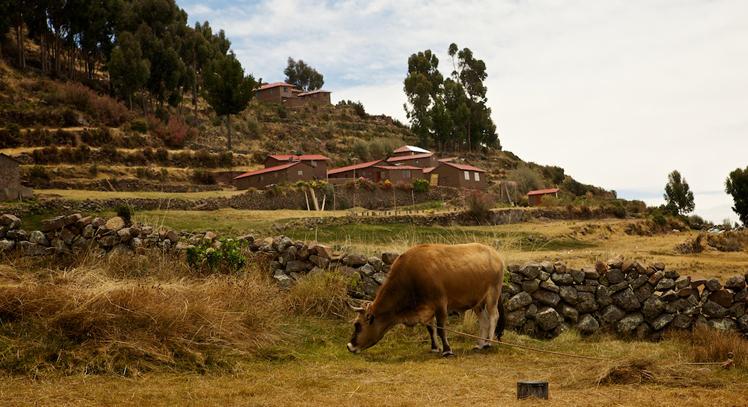 Taquile Lago Titicaca
