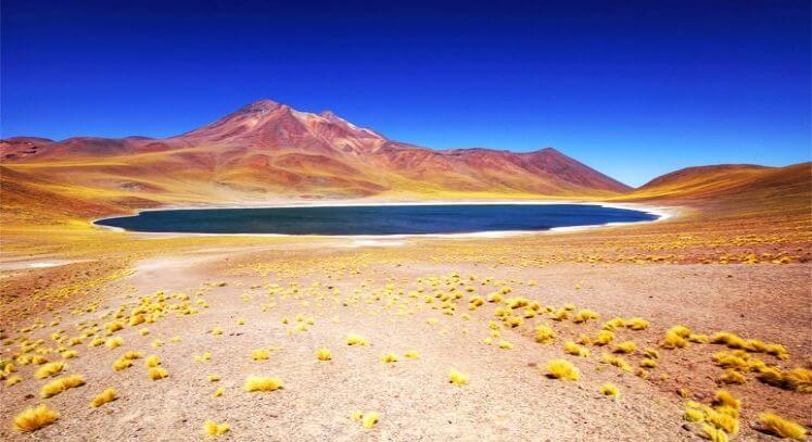 Lagunas Altiplánicas Miñiques