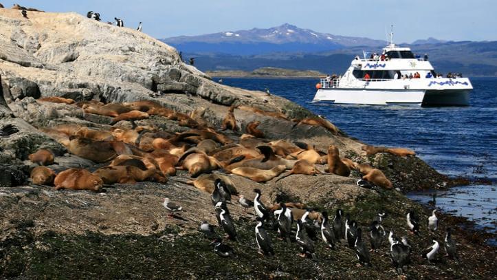 Isla de Lobos Ushuaia