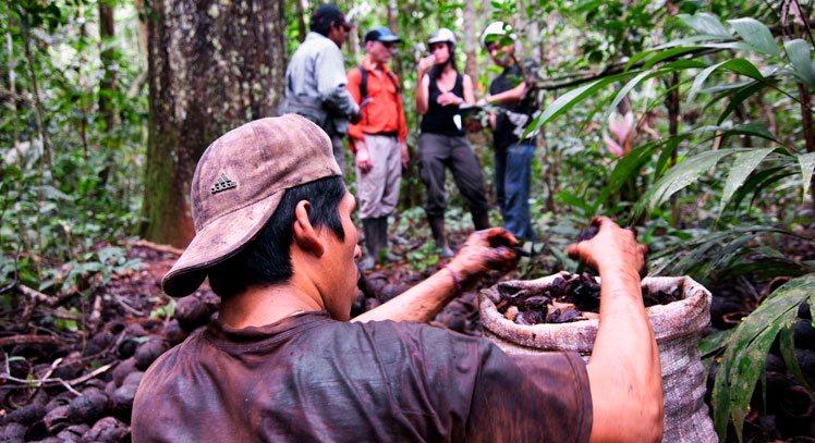 Parque Nacional Manu (6 días)