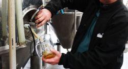 Tour Vino y Cerveza