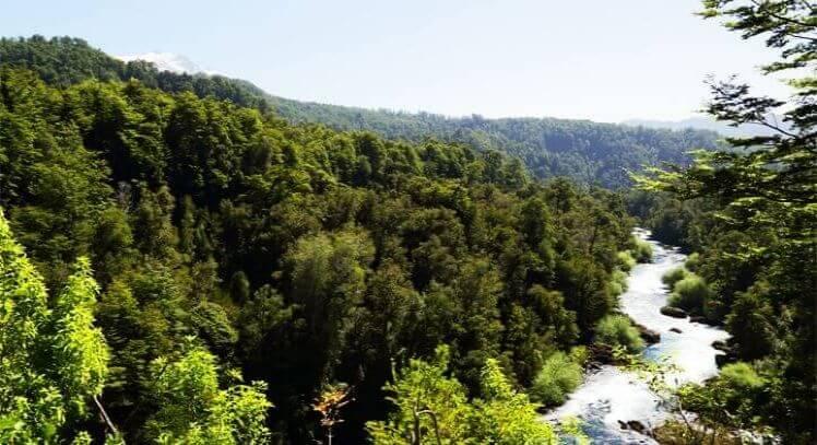 Reserva Huilo Huilo Pucon